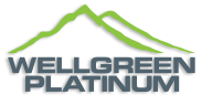 Wellgreen Platinum Ltd.