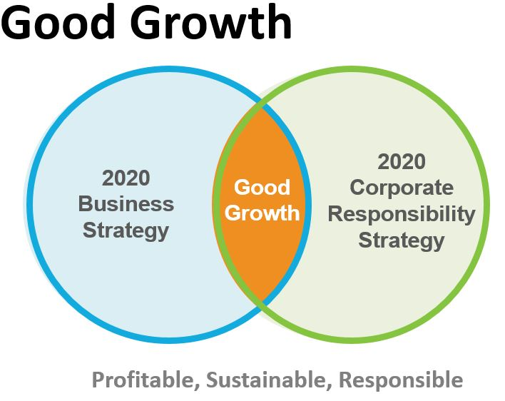 corporate growth strategy A growth - a growth strategy is when an organization expands the number of markets served or products offered, either through its current business(es) or through new business(es).